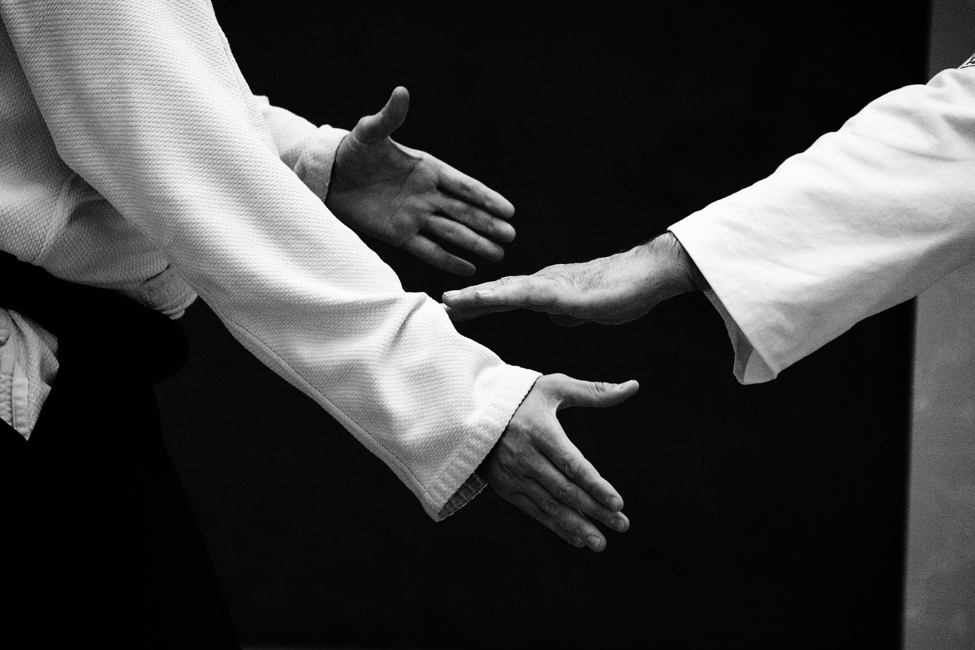 Aikido & Ondernemerschap